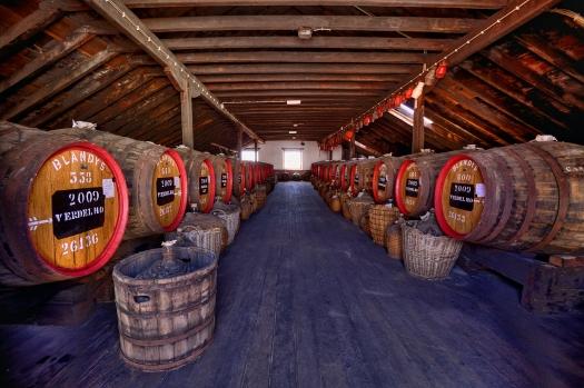 Madeira Wine Company - Divulgacao